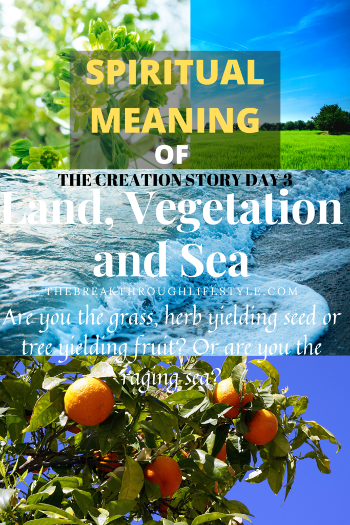 Land Sea Vegetation Creation Story Day 3